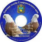 """""""Элитные голуби Ставропольского края"""""""